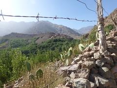 P1120137 (Terezaestkov) Tags: maroko morocco vysokatlas highatlas atlasmountains dabaltubkal jabaltbql jbeltoubkal aroumd