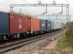 Intermodal Shipping Containers (Stuart Axe) Tags: city uk greatbritain england train unitedkingdom box traction rail railway loco trains container evergreen cast po gb sealand springfield containership hyundai railways essex boxs yangming msc skoda hanjin boreham chelmsford ger shippingcontainer kline freighttrain ditton newhall hapaglloyd cosco freightliner maersk intermodal greateastern nedlloyd chinashipping geml coatbridge traffordpark uniglory bigmetalbox gbrf countytown countyofessex ponedlloyd greateasternmainline unlimitedphotos crewebasfordhall lawleystreet columbusline cityofchelmsford generalslane newhallhalt