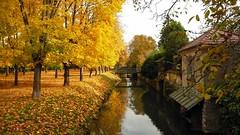 Vue Automnale - Crcy La Chapelle (steph77700) Tags: france tree seine automne canal eau pont et 77 arbre chapelle feuille marne seineetmarne lavoir crcy