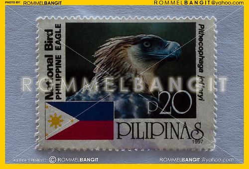 Monkey Eating Eagle | Philippine Eagle