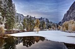 Reflections  DSC00885 (Ken Hornbrook - inspirationalphotoimages.com) Tags: california trees reflection ngc yosemite blinkagain