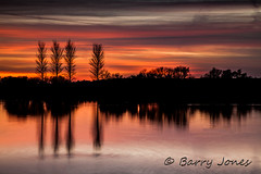 """sunset-at-Abberton-Reservoir (Barryjones_2003 Also on ipernity.) Tags: sunset colour reflection tree water essex colchester abbertonreservoir flickraward stunningskies 100commentgroup """"flickraward5"""" """"flickrawardgallery"""" flickrstruereflection1 flickrstruereflection2 flickrstruereflectionlevel1 rememberthatmomentlevel4 rememberthatmomentlevel1 rememberthatmomentlevel2 rememberthatmomentlevel3 me2youphotographylevel2 me2youphotographylevel3 me2youphotographylevel1 rememberthatmomentlevel9 rememberthatmomentlevel5 rememberthatmomentlevel6 me2youphotographylevel4 rememberthatmomentlevel10 vigilantphotographersunite yahoo:yourpictures=reflectionsv2 vpu2 vpu3 vpu4 vpu5 vpu6 vpu7 vpu8 vpu9 vpu10"""