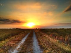 Sunset everglades (Matthew Harris) Tags: sunset everglades hdr iphone floridasunset hdrsunset evergladesholidaypark evergladessunset iphonehdr
