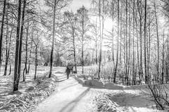 Airglow // (Black & White Edit) (Auensen) Tags: winter wh