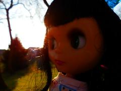 The freezing sun...