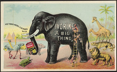 Ivorine is a big thing. His tusks were cleaned with Ivorine.  [front] (Boston Public Library) Tags: animals tigers giraffes lions monkeys elephants hippopotamuses advertisingcards householdsoap