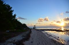 good morning (justuff) Tags: chris beach keys cool florida miami flamingo homestead floridakeys array kilroy bahiahonda southflorida bigpinekey keydeer justuff chriskilroy