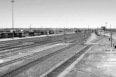 Selkirk Yard Looking South (greenthumb_38) Tags: railroad blackandwhite bw yard train blackwhite duotone locomotive trainyard csx jeffreybass
