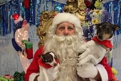 IMG_0179 (PMC Fresno) Tags: santa pet photos center medical spa pmc