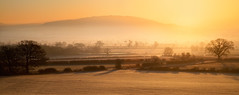 Wrekin in Mist (Natasha Bridges) Tags: morning trees winter mist sunrise dawn countryside frost shropshire fields wrekin