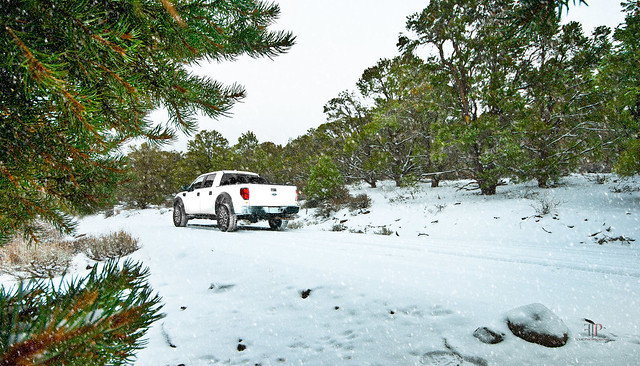 road trees winter white snow ford truck offroad 4x4 f150 off raptor svt