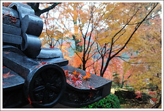 20121126_6853b_ (Redhat/) Tags: autumn fall japan temple maple kyoto redhat           eikando