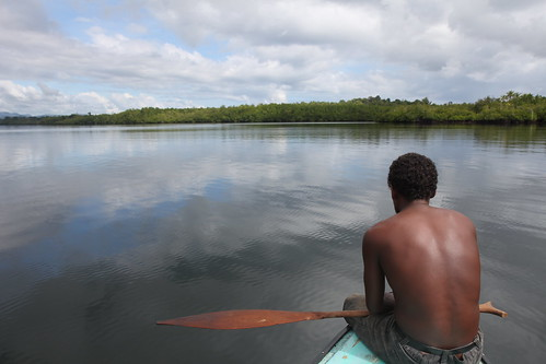 Mangroves in Maramasike Passage, Solomon Islands. Photo by Wade Fairley, 2012.
