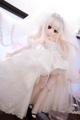 DSC09785-test (Haku1923) Tags: wedding doll dress dd dollfie mdd dollfiedream