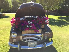 Idaho 24 (Rock Water) Tags: antiquecars flowerboxes petunias whimsy whimsical