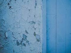 Blue textures (fishyfish_arcade) Tags: 20mmf17 gx7 lumix panasonic panasonic20mmf17asphlumixg blue texture cracked paint
