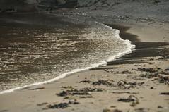 Calm waves (viliris) Tags: wave water shoreline septmber monocromatic monochrome fevik norway quiet