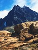 Mountain Goats at Lake Ingalls (Stephanie Meshke) Tags: washington hiking alpinelakeswilderness wenatcheenationalforest mountaingoats goats mountain mtstuart lakeingalls