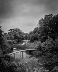 Grand cascade bridge (alasdair.matthews) Tags: film bw monochrome mpp micro technical 5x4 4x5 blenheim palace country house park schneider sch