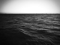 : Shinmaiko Marine Park (Jon-F, themachine) Tags: bodyofwater bodiesofwater  waterside waterfront water bay   isewan blackandwhite bw bnw monochrome monochromatic grayscale greyscale nocolor jonfu 2016 olympus omd em5markii em5ii  mirrorless mirrorlesscamera microfourthirds micro43 m43 mft ft     snapseed japan  nihon nippon   japn  japo xapn asia  asian fareast orient oriental aichi   chubu chuubu