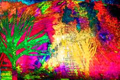 Tierra, fuego, cielo y agua (seguicollar) Tags: imagencreativa virginiasegu rbol paisaje fuego cielo tierra agua bosque photomanipulacin photomontaje artedigital arte art artecreativo