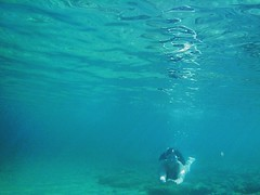 Underwater.. (fil_____) Tags: paliouri halhidiki chalkidiki greece sea deepblue blue underwater dive lovesea me summer2016 summer