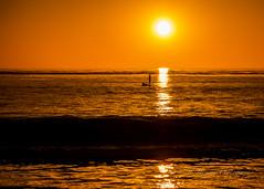 Sunset paddle with a friend..... (cbjphoto) Tags: carljackson carmel ocean pacific photography beach california