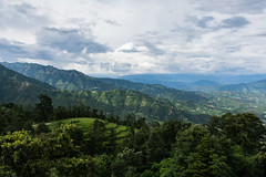 Dhulikhel (Gary Ellis Photography) Tags: dhulikhel flowersplants nepal nepalese nepali afternoon agricultural ancient beautiful beauty cheerfulness cliff colorimage colorful colourimage colourful daytime digital earth environmental exterior field forest frontview gorgeous happiness happy hill joy landscape landscapephotography monsoon mountain naturephotography old outdoors outside scenic tree valley vegetation wood woods