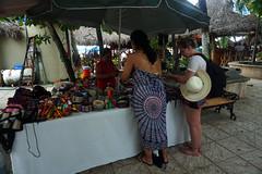DSC00582(1) (Julia Malm) Tags: mexico puerto vallarta guau sayulita san pancho beach playa busride ocean vacation bikini friends family tortugas food hamburguesa con camarn agua de jamaica pollo ajo foodporn