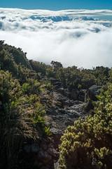 Hiking on Haleakala (8mr) Tags: iao valley needle driving hiking haleakala crater volcano maui 808 hawaii honolulu mother nature scenic views landscape clouds