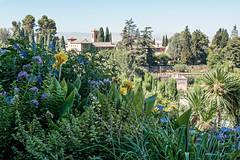 Jardines de la Alhambra (Mr. Lunastorta) Tags: landscape nature flowers gardens palaces spain andalusia granada alhambra summer fujifilm xt10