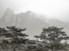 "Seoraksan NP • <a style=""font-size:0.8em;"" href=""http://www.flickr.com/photos/44919156@N00/29454950081/"" target=""_blank"">View on Flickr</a>"