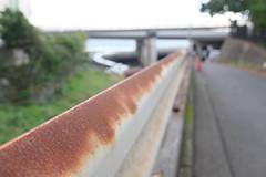 stained guardrail (HAMACHI!) Tags: oiso kanagawa 2016 japan summer autumn sea  guardrail