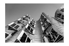 Media Harbour Dsseldorf - Architect: Frank Gehry (stefanfricke) Tags: medienhafen mediaharbour zollhof gehry dsseldorf blackwhite sony ilce6000 a6000 rahmen border