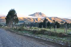 Corazn Volcano (Ryan Hadley) Tags: coraznvolcano corazn volcano volcancorazn clouds trees road sunrise alpenglow landscape chuquiragualodge avenueofthevolcanoes ecuador southamerica mountains andesmountains
