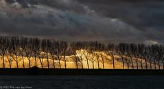 Burning sky (robvanderwaal) Tags: trees sunset sky cloud sun clouds zonsondergang bomen wolken burningsky lucht 2012 wolk rvdwaal robvanderwaalfotografienl