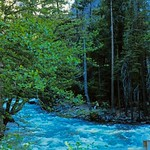 1983_JULY_Yosemite2-FujiRD100-RollB_0017 thumbnail