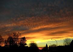 ** Ce soir-là...**-1 (Impatience_1(très peu présente)) Tags: coucherdesoleil sunset ciel sky arbre tree m mfcc supershot abigfave anawesomeshot absolutelystunningscapes flickrdiamond coth coth5 alittlebeauty citrit sunrays5 fantasticnature blinkagain 100commentgroup ngc bej lovely~lovelyphoto thegalaxy ruby5 naturesfinest ruby10 ruby15 cloudy day impatience paysage landscape groupenuagesetciel