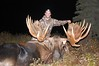 Alaska Moose and Bear Hunt - Dillingham 20