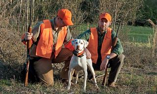 Alabama Quail Hunt - Davis Quail 12
