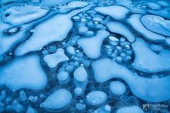 Ice Maze (Chip Phillips) Tags: park blue winter lake canada ice frozen bubbles abraham national alberta maze banff plains kootenay