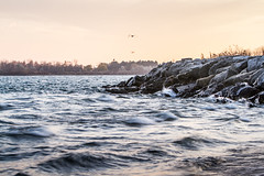 Lake Ontario - Late Evening (Philip Barlow) Tags: toronto ontario canada water canon eos waves 7d slowshutter lakeontario