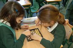 Chess (11)