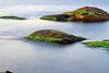 Sjögräs 1 (Quo Vadis2010) Tags: motion water se movement sweden air sverige westcoast vatten luft movements halmstad tylösand halland longtimeexposure rörelse motions västkust tyludden irörelse långexponeringstid rörelser