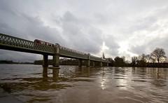 High Tide Tube (ianwyliephoto) Tags: districtline chiswick hightide strandonthegreen kewrailwaybridge londonw4 londonundergroundthames