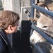Rob confers with Donkey
