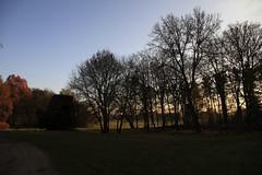Hoppenrade 2012 | filmmann.de 07 (foto4berlin.de) Tags: park autumn fall germany deutschland herbst natur brandenburg fontane foto4berlinde filmmannde lwenberg hoppenrade lwenbergerland