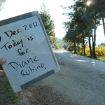 """Today is for Diane Rubino <a style=""""margin-left:10px; font-size:0.8em;"""" href=""""http://www.flickr.com/photos/59134591@N00/8246709141/"""" target=""""_blank"""">@flickr</a>"""
