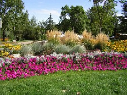 Photo - Adopt-A-Flower Bed