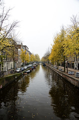 Bloemgracht (William J H Leonard) Tags: city autumn trees holland building water dutch amsterdam architecture buildings canal cityscape thenetherlands citylife canals nederlands citycentre jordaan noordholland bloemgracht canalhouses northholland flowercanal westerncanalring
